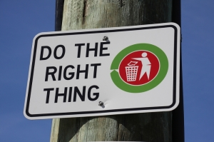 do_the_right_thingA